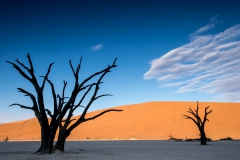Deadvlei morning