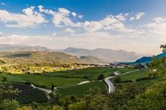 Kaltern an der Weinstraße Südtirol